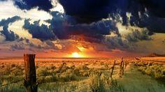 Wallpaper Sunset on Green Desert - Photo Wallpaper desktop Field Wallpaper, Scenery Wallpaper, Nature Wallpaper, Hd Wallpaper, Artistic Wallpaper, Ios Wallpapers, Desktop Backgrounds, Hd Desktop, Photo Wallpaper