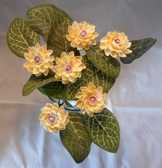 Six yellow coquina shell seashell crafts flowers