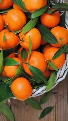 Orange fragrance oil lifts the whole fragrance with citrus hints. Fruit And Veg, Fruits And Vegetables, Fresh Fruit, Citrus Fruits, Orange Wallpaper, Food Wallpaper, Photo Fruit, Beautiful Fruits, Orange Aesthetic