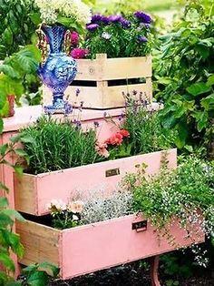 Garden drawers with treasures of green. #upcycle #garden #diy
