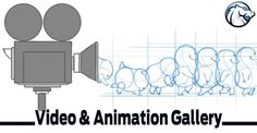 Video Production, Web Development, Design