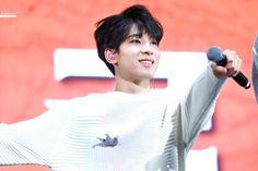 180202 #SEVENTEEN #Wonwoo at CARATLAND by @raffine_svtww