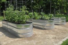 modern garden, Vegetable planters, trough planter, galvanized