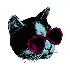 New party member! Tags: cat summer cats kitty kitten sun holiday sunglasses spring vacation break sunny