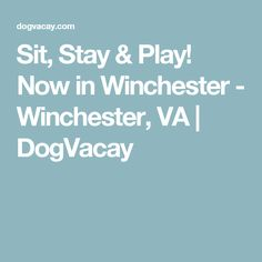 Sit, Stay & Play! Now in Winchester - Winchester, VA | DogVacay