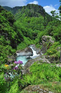 Eastern Blacksea Region of Turkey World's Most Beautiful, Beautiful World, Beautiful Places, Cool Places To Visit, Places To Go, Turkey Photos, Nature View, Turkey Travel, Black Sea