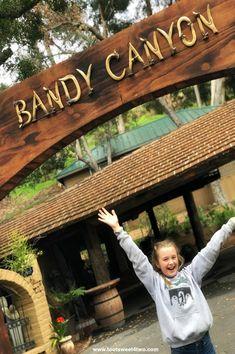 Sign at Bandy Canyon