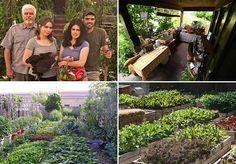 familia-cria-mini-fazenda-no-meio-da-cidade-produz-3-toneladas-de-comida-organica-por-ano/