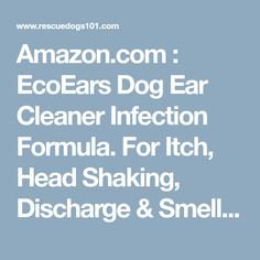 Amazon.com : EcoEars Dog Ear Cleaner Infection Formula. For Itch, Head Shaking, Discharge & Smell. Natural Multi Symptom Ear Cleaner for Cleaning Away Most Dog Ear Problems. 100% Guaranteed. : Pet Ear Care Supplies : Pet Supplies