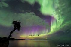 Aurora Borealis (Northern Lights) captured May 2016 in Grand Portage, Minnesota   Photo by Travis Novitsky