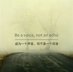Jesus was a voice. John the Baptist was a voice. Moses was a voice. Those who make a difference are a voice, not an echo.