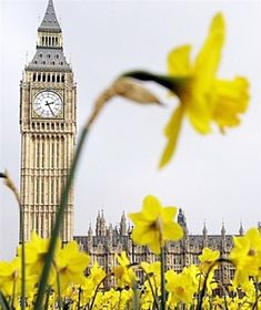 Springtime in London.  'Nuf said.  ASPEN CREEK TRAVEL - karen@aspencreektravel.com