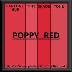 Pantone Seasonal Color Swatch Poppy Red Colour Palette Palettes