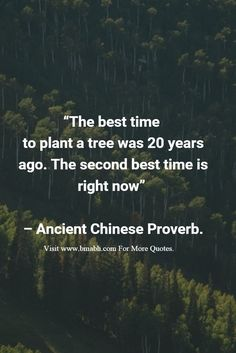 """""""The best time to plant a tree was 20 years ago. The second best time is right…"""