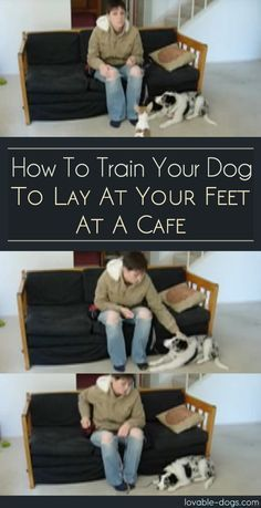An Kety Pet Care. Get Your Dog Trained Today With These Simple Tips. Training your dog is important for an obedient relationship between you and your canine friend. During the training process, you and your dog will experien Service Dog Training, Service Dogs, Dog Training Tips, Training Academy, Pitbull Training, Training Online, Training Exercises, Dogs Tattoo, Dog Minding
