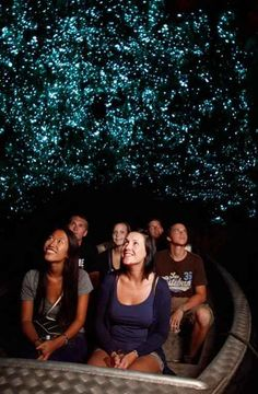 Las cuevas de Nueva Zelanda, ¡impresionan!