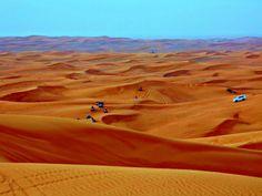 Desert safari by Péter Antal Vincze