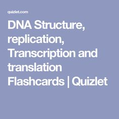DNA Structure, replication, Transcription and translation Flashcards | Quizlet