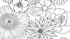 coloring paper