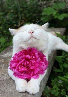 Flowers make you smile