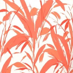 coral color designs | New York Design Blog | Material Girls | New York Interior Design ...