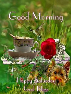 Happy Saturday! Good Morning Wishes Friends, Good Morning God Quotes, Good Morning Prayer, Morning Blessings, Good Morning Picture, Good Morning Flowers, Good Morning Messages, Good Morning Good Night, Morning Pictures