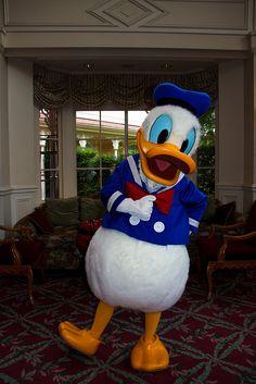 Donald Duck @ The Disneyland Hotel, Disneyland Paris