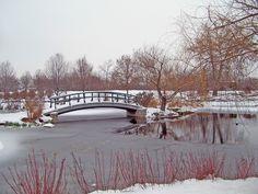 Patak, Híd, Snow, Tó, Winter, Fagyasztott, Hóesés