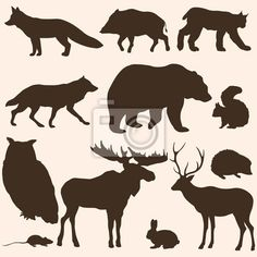 Wall mural vector set of forest animals silhouettes