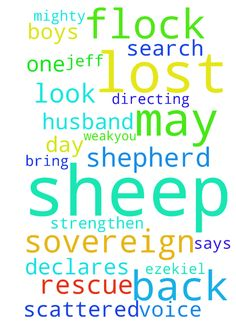 Shepherd -  Lord, be the Shepherd for all Your lost sheep. Lord, go rescue my husband Jeff, and boys. May they hear You calling their name every day to come back to Your flock. May they be obedient to Your voice. May You lead my husband, and boys, one of Your lost sheep, into the paths of righteousness. Lord, rescue Your lost sheep from the enemy, who is guiding and directing them down the wrong pathways. Lord, I am in Your flock, listening to Your voice. My spouse is entangled in sin and is…