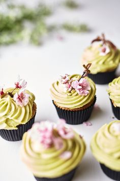 A pretty way to embellish Spring cupcakes: with live apple blosoms.