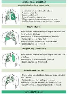 Examination of Respiratory System Cheat Sheet - NCLEX Quiz Med Surg Nursing, Cardiac Nursing, Pediatric Nursing, Pathophysiology Nursing, Pharmacology Nursing, Nursing School Notes, Medical School, Nursing Assessment, Respiratory Therapy