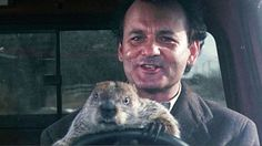 """Billy Wilders """"Manche mögen's heiß"""" (1959) rangiert in allen Komödien-Listen stets vorne, auch hier ist er auf der Eins. Der gute alte, """"kultige"""" Coen-Brüder-Film """"The Big Lebowski"""" (Platz 11) darf natürlich auch nicht fehlen. Einen Außenseiter-Sieg erzielte eher """"Und täglich grüßt das Murmeltier"""" von Harold Ramis, der es auf den erstaunlichen (und vielleicht gerechtfertigten) dritten Platz schaffte – der Film mit Bill Murray und Andie McDowell war 1993 kein Hit."""