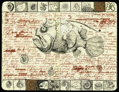 fish by julia_julia.f, via Flickr #sketchbook #drawing #draw