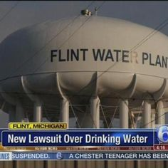 Woman Leading Flint Lead Poisoning Lawsuit Found...