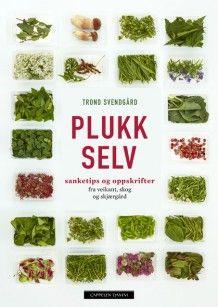 Plukk selv av Trond Svendgård (Innbundet) Avocado Toast, Green Beans, Zucchini, Cabbage, Herbs, Vegetables, Breakfast, Food, Dream Life