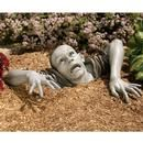Zombie of Montclaire Moors: so I thought about this for about a minute...especially after I saw the name...but decided that would be just too much for my front yard