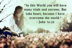 Take heart, I have overcome the world. Take Heart, God's Heart, Bible Quotes, Bible Verses, Scripture Images, Biblical Quotes, Bible Scriptures, Spiritual Quotes, Qoutes