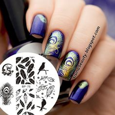 Born Pretty Nail Art Stamp Template Image Plate Birds Dragon Feather Nail Art Stamp Stamping Template BP-75