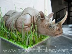 Rhino Cake by Karen Portaleo/ Highland Bakery, via Flickr