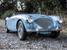 1953 Austin Healey 100/4