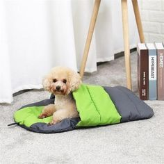 Type: Cats Material: Fiber Color: Green Size: M Type: Pet Dog CatRabbit Animals Style: Stylish Feature: Waterproof/Portable/Collapsible Kind: Dog Cat Sleeping bag Cheap Dog Beds, Pink Dog Beds, Pet Dogs, Dog Cat, Winter Cat, Pet Steps, Sleeping Dogs, Pet Gifts, Caves