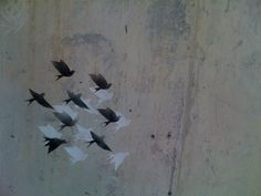 Cal stencil birds by Derringdos, via Flickr