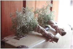 Flowers | Just Judy Photography How To Dry Basil, Wedding Decorations, Herbs, Flowers, Photography, Photograph, Florals, Fotografie, Herb