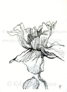 "Items similar to Botanical Art - Poppy Print - Mother's Day Gift - Black and White - Poppy Flower - Drawing, 4 x 6 Fine Art Print, ""Poppy Study Garden on Etsy Botanical Drawings, Botanical Illustration, Botanical Art, Poppies Tattoo, Australian Artists, Fauna, Art Sketchbook, Fine Art Prints, Original Art"