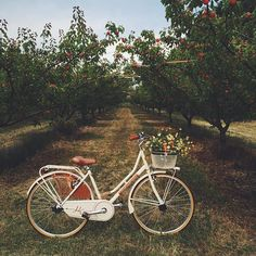 Bici Retro, Retro Bike, Cycle Chic, Velo Vintage, Vintage Bicycles, Bicycle Makeover, Spring Aesthetic, Bike Style, Aesthetic Vintage
