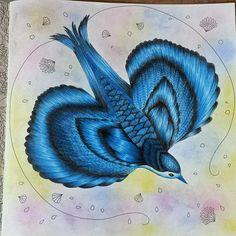 Meu pássaro azul... #maped #coloringbook #johannabasford #flores #florestaencantada #livros #livrodecolorir #meucolorido #wip #lovecolor #lovebooks #polycromos #fabercastell #faber #reinoanimal #passarinhos #passaros #colorista #colorindocomamor #gizpasteloleoso #pentel #jardimsecretoinspiracao #natureza #magicaljungle #boanoite