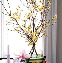 155 Best Blooming Branches Images In 2019 Floral Arrangements