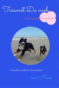 Urlaub mit Hund am Meer – Ferienhäuser für Deinen Traumurlaub…