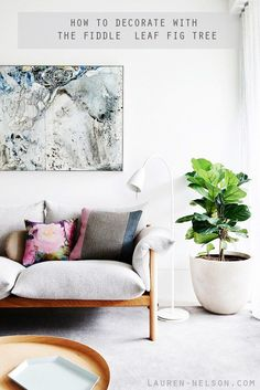 How To Decorate With The Fiddle Leaf Fig Tree // Lauren-Nelson.com